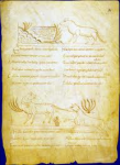 littérature,rome,histoire